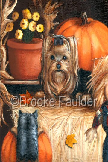 Hay day yorkie and puppy in halloween / autumn setting.