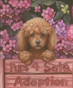 teacup poodle, painting, dog art, Brooke Faulder