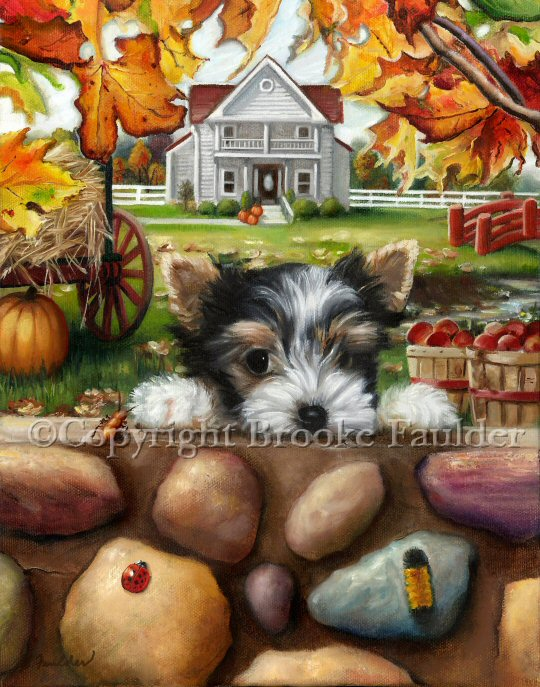 A Biewer Terrier looks over the colorful stone wall, curious what lies outside of his own surroundings. He discovers some new and intereresting creature who may be just as curious as he is. Autumn sets the scene with yellow, red and orange leaves, pumpkins, a few apple bushels and maybe later, a hay ride in the wagon.