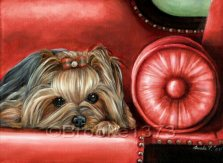 A simple life, a simple painting, focusing on one dog and one color. The settee made of scarlet with rivets and a matching roll pillow or bolster pillow leave most of the focus on the Yorkie.