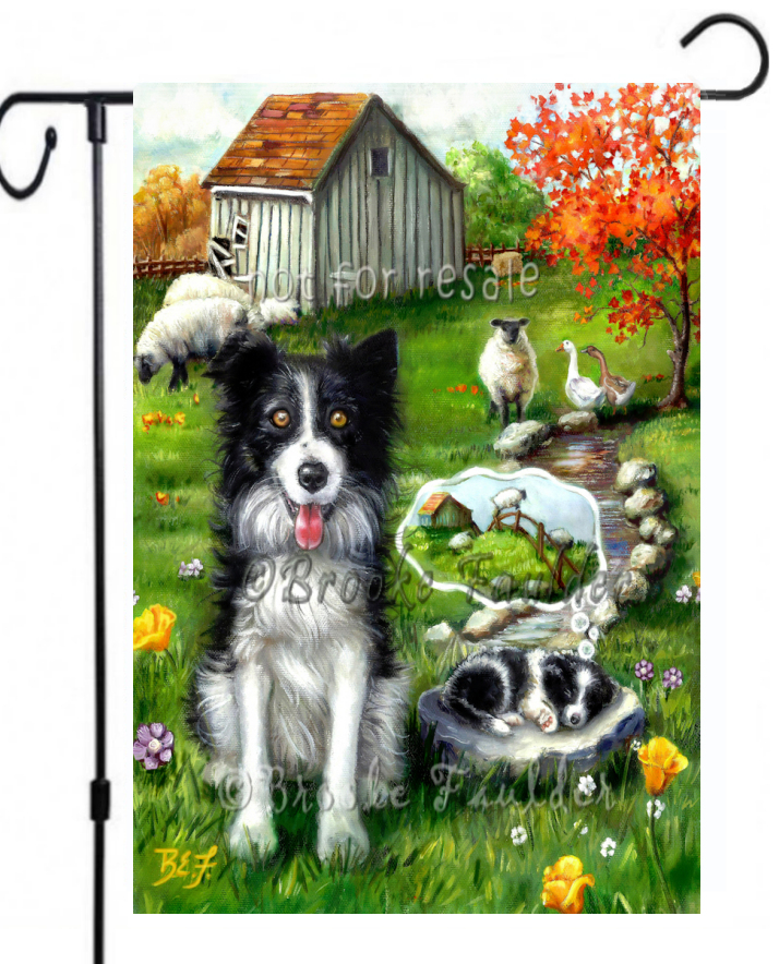 border collie and puppy guard sheep with old barn and yellow wildflowers
