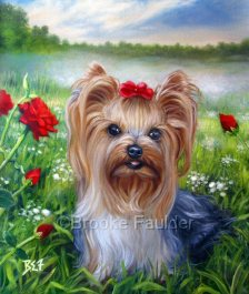 Yorkisire Terrier Dogs Oil Paintings