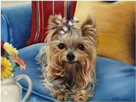 yorkies, painting, art, puppy, Brooke Faulder