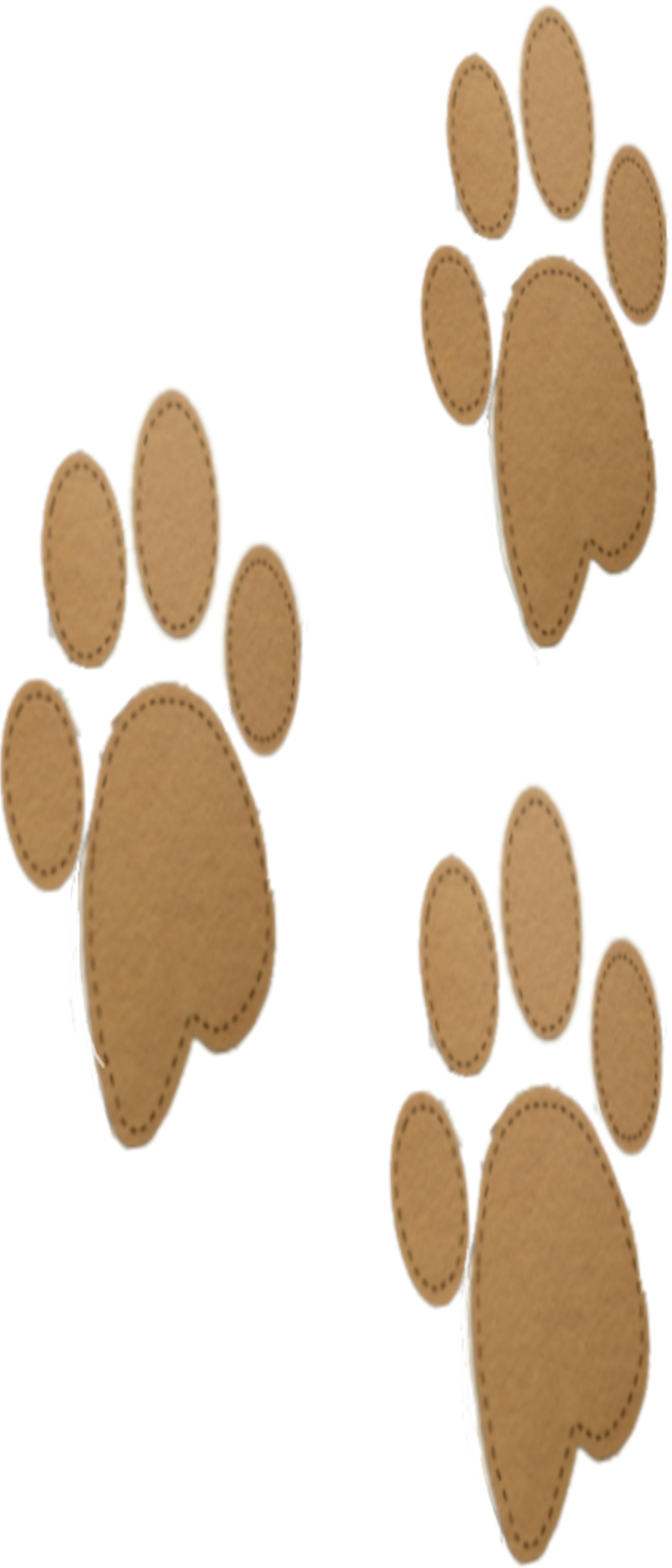 felt paw prints