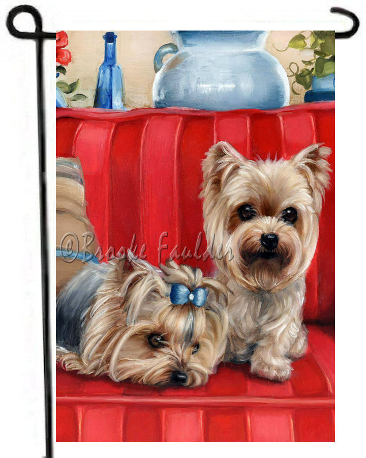 2 Yorkies on red sofa background