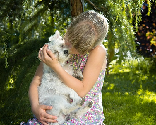 girl holding a westie mixed breed dog