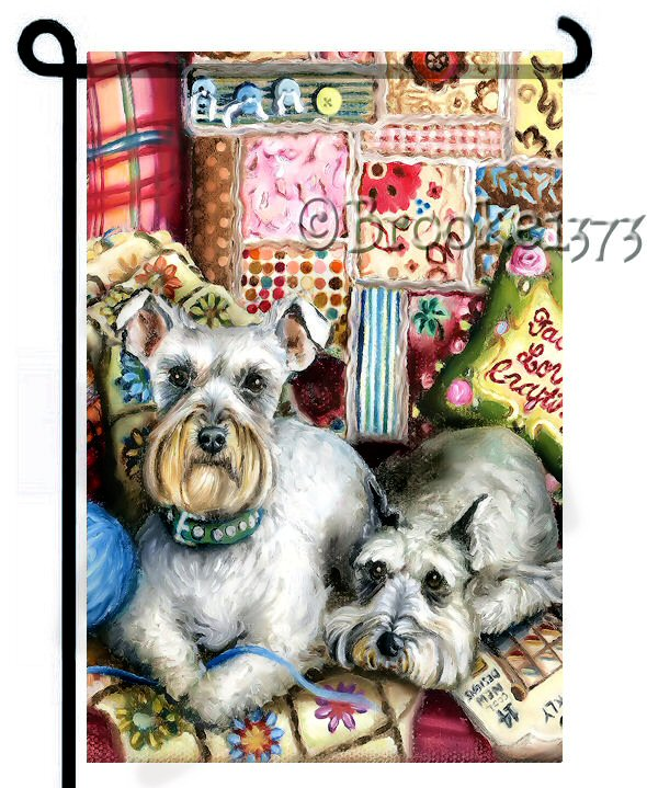 Two schnauzers on