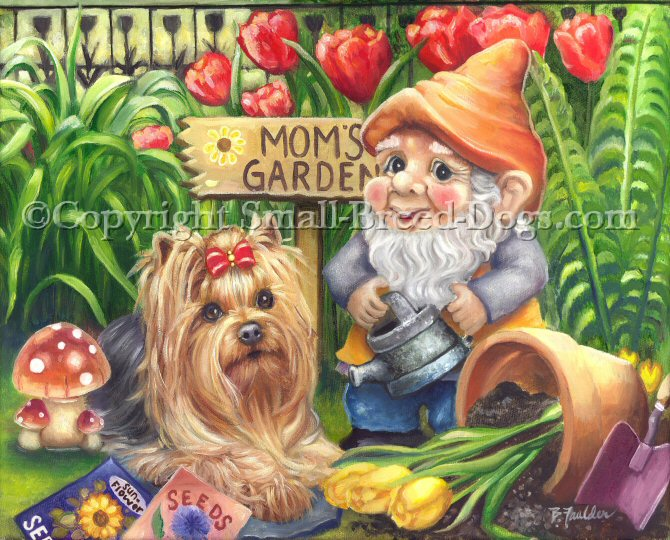 This little Yorkie has decided to hang out with the garden gnome in mom's garden. Perhaps mom is somewhere planting the new seeds, or perhaps cleaning up another pot of spilled flowers.  Red and yellow tulips give this dog painting a feel that spring is in the air.