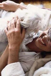 maltese rescue dogs with forever family